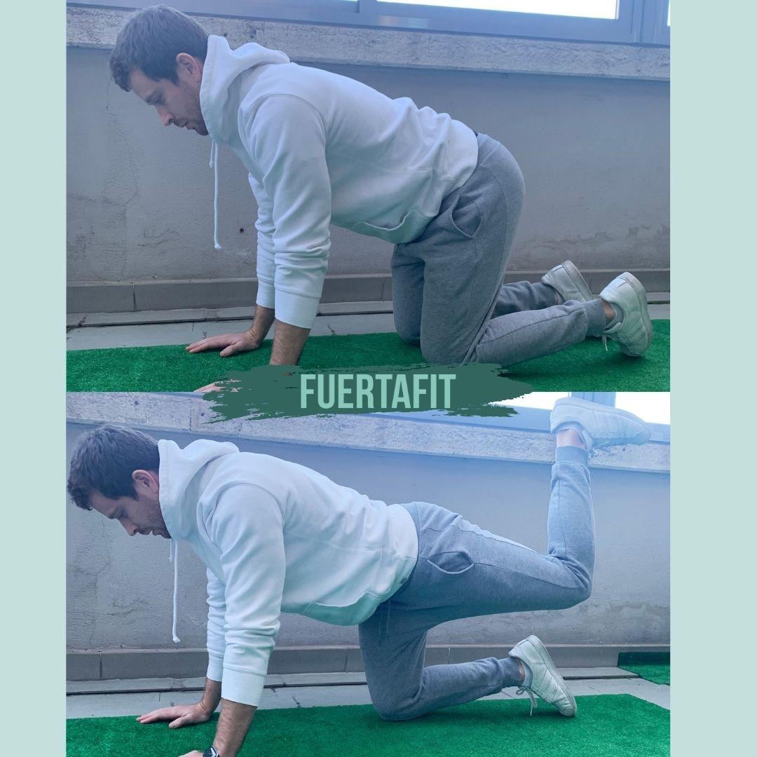 ejercicios de glúteos sin material fuertafit
