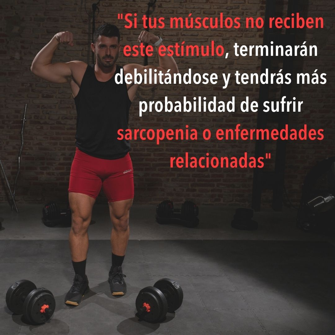 músculo saludable con estímulos necesarios