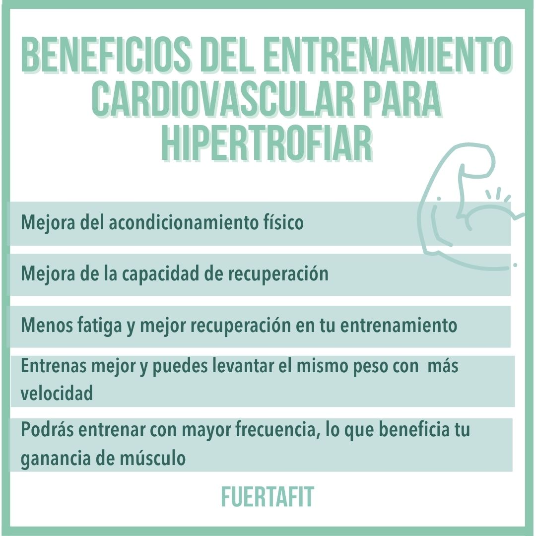 beneficios entrenamiento cardiovascular hipertrofia